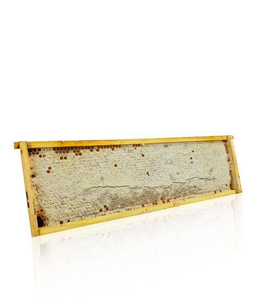 Honeycomb Ideal Frame